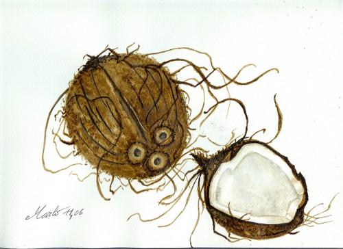 Noix de coco Vendu