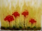 Fleurs rouges dans un champ de blé 50/40cm