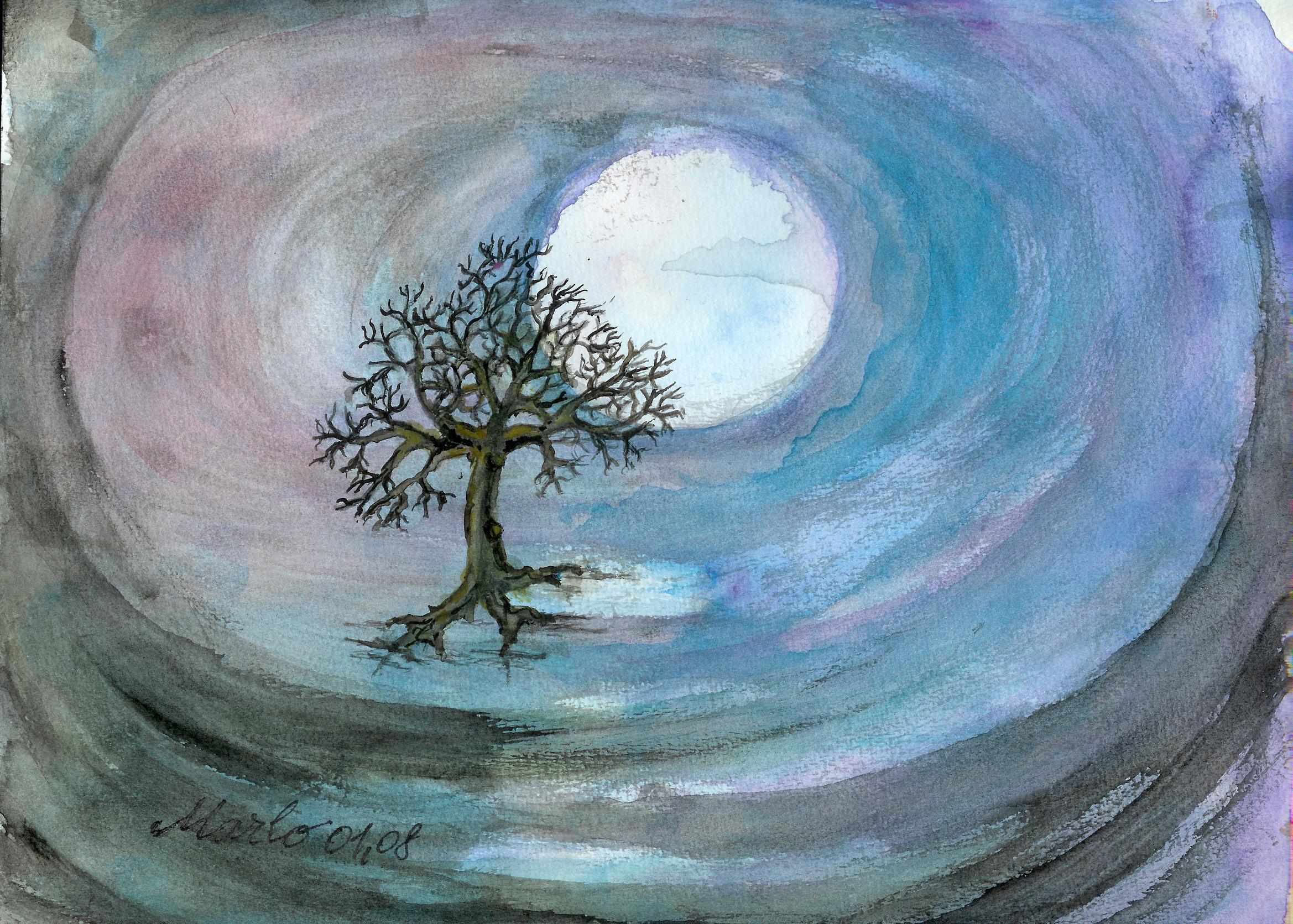 solitude-01-2008
