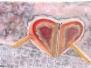 Pastels - Histoires de coeur
