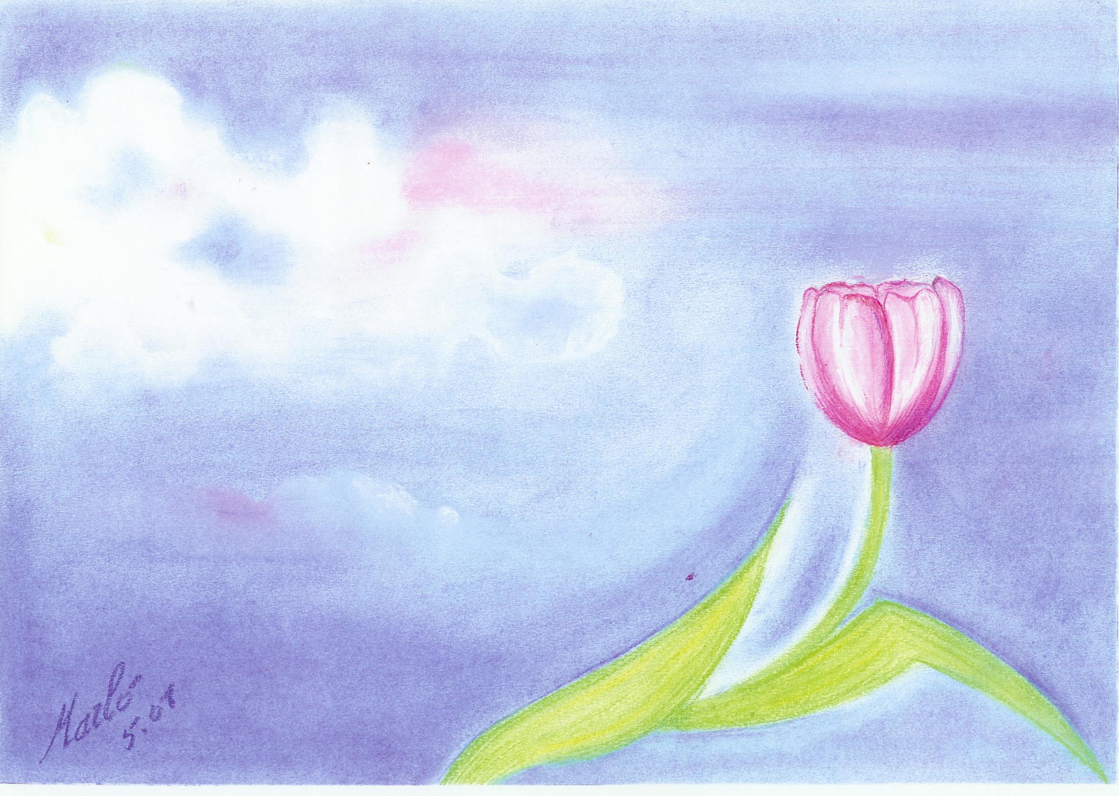 Ciel de printemps. 30/40 cm