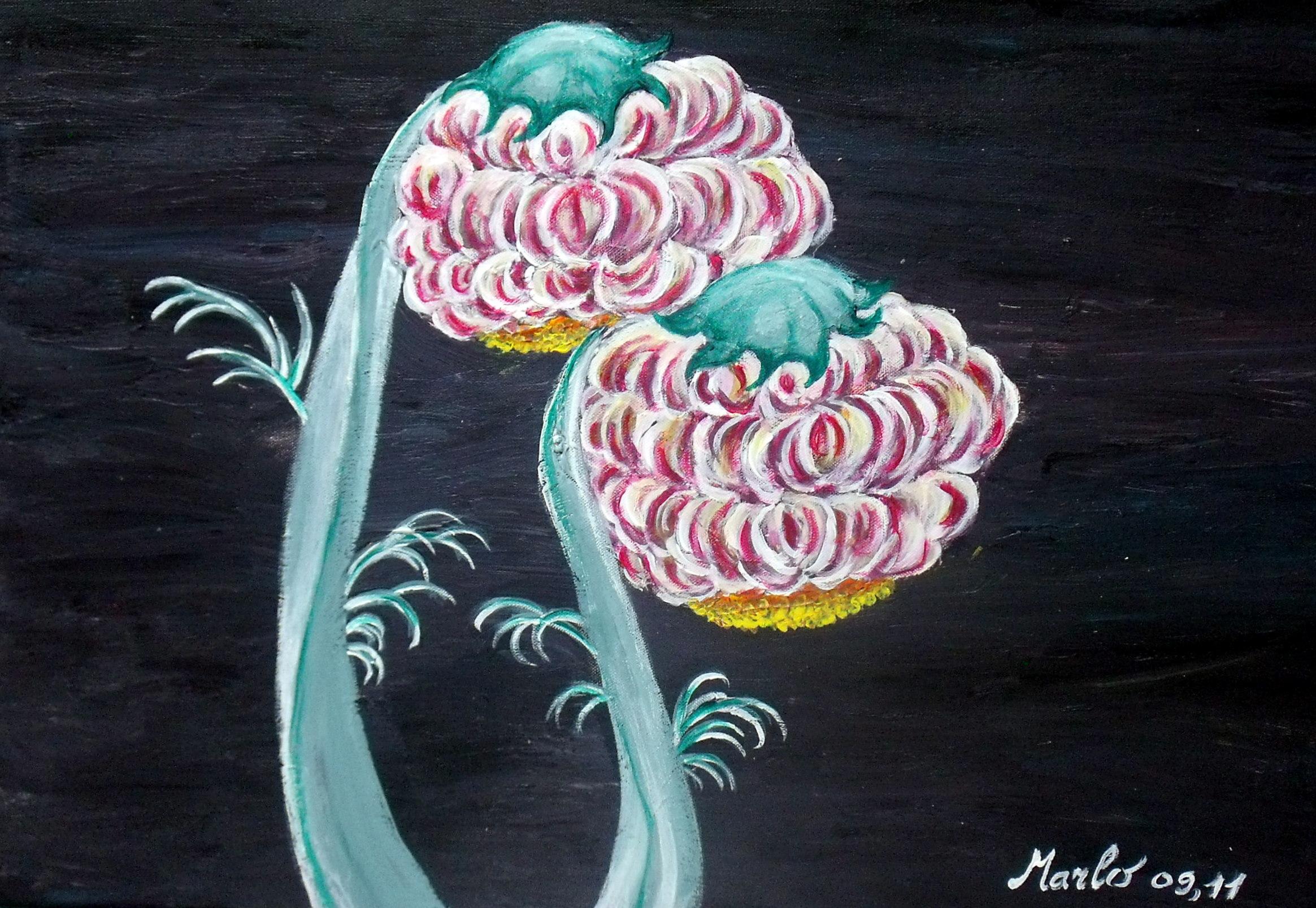 Le monde floral 70/50cm