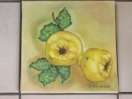 Deux coings, huile sur toile, 30/30 cm