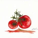 tomates500